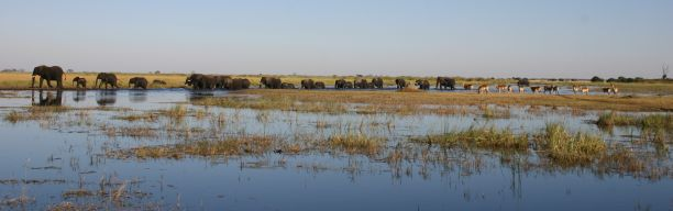 Adventure Safari Botswana